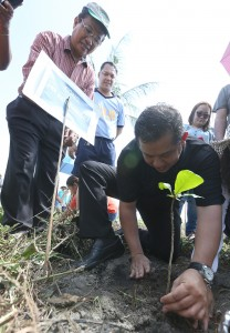 "COASTAL PROTECTION ----  Leyte (1st Dist) Rep. Ferdinand Martin ""FM"" Romualdez assisted by Region 8 DENR Director Leonardo Sibbaluca (left) plants  beach type trees (talisay) along more than 1 kilometer coastal beach of Barangay Payapay san Jose Tacloban City.The tree planting aims to protect coastal areas of Tacloban and other parts of Leyte from storm surge like typhoon Yolanda.photo by Ver Noveno"